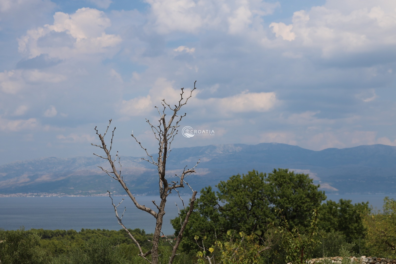 Land for sale in Mirca on island of Brac